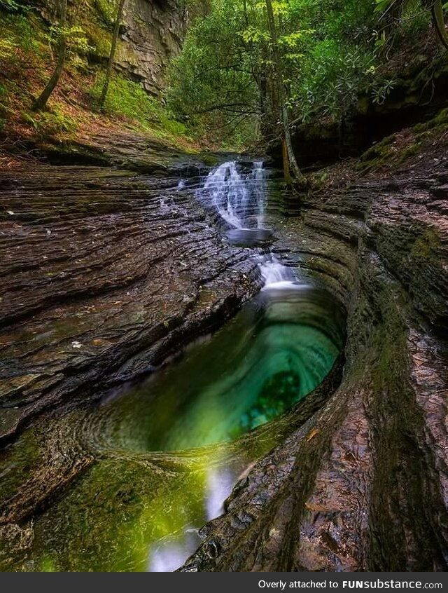 Devil's Bathtub, George Washington and Jefferson National Forest, Devils Fork Loop Trail, Duffield, Virginia