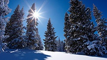 Vail Mountain | Ski Resort Information | Vail.com