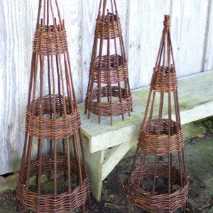 Willow Topiary Plant Supports, Set of 3