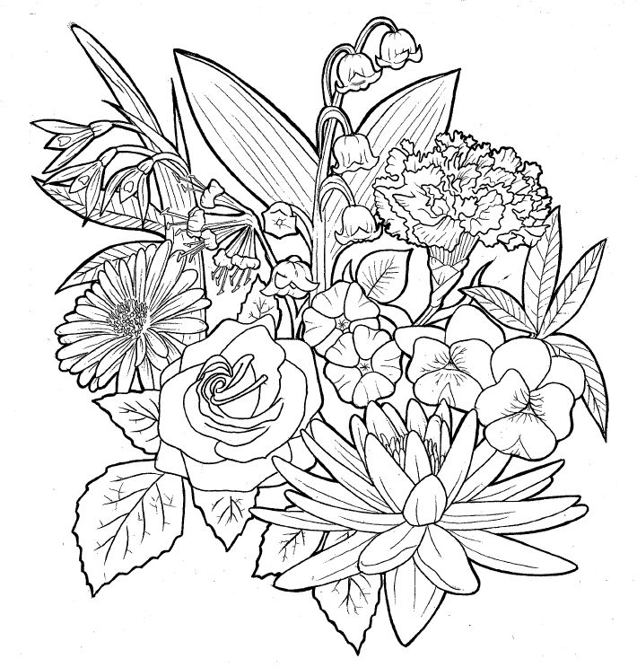 Line Drawing Flower Tattoos : Best projects to try images on pinterest owl tattoo