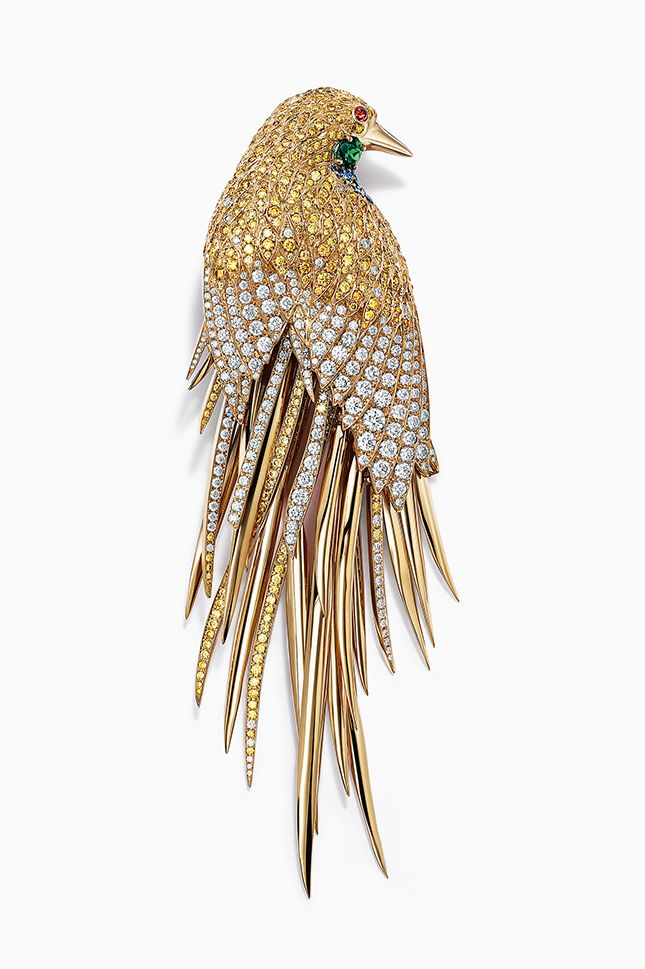 """Tiffany & Co. Blue Book 2017. Art of the Wild- Feathered Cloak brooch in 18k Gold with mixed-cut Diamonds and gemstones. The Feathered Cloak theme takes on the vivid colours and forms of exotic birds, with gemstone-coated """"plumage"""" that simulate the movement of actual feathers."""