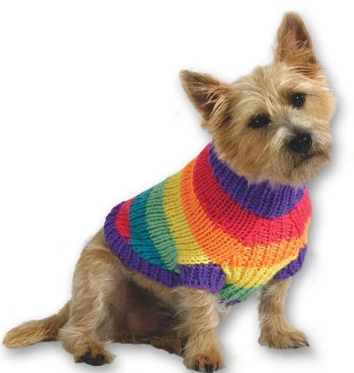 Best 25+ Large dog sweaters ideas on Pinterest | Large dog ...