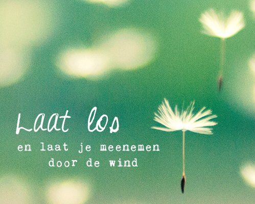 Laat los en laat je meenemen door de wind.    E-cards Happinez