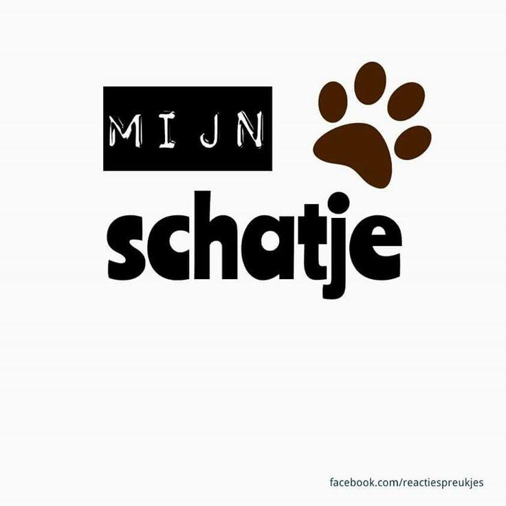 Mijn schatje #dier #huisdier #poot #afdruk #liefde #kaart #dierendag