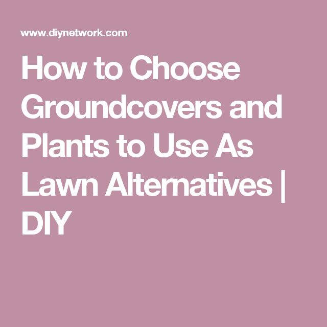 How to Choose Groundcovers and Plants to Use As Lawn Alternatives | DIY
