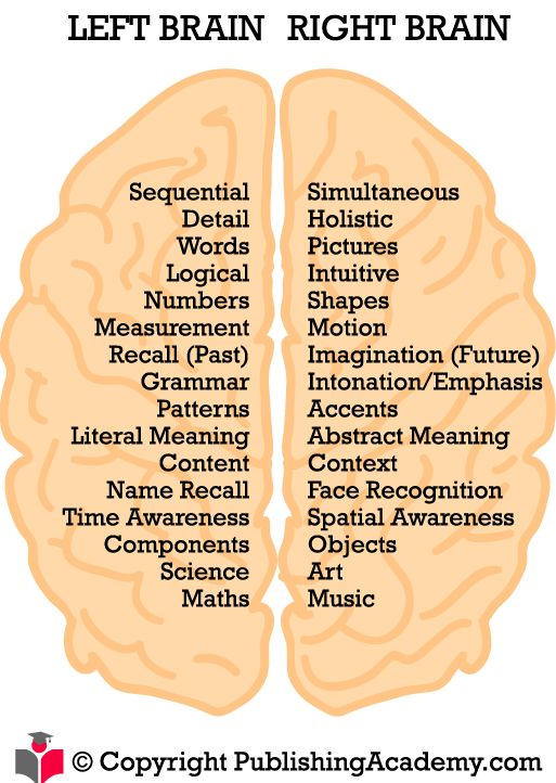 Left and Right Brain Hempishpere Functions