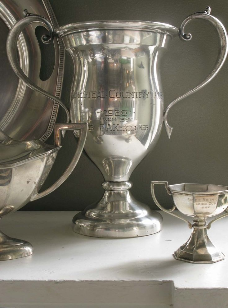 antique silver trophies-want! Fill with flowers or group together for a Derby Party!