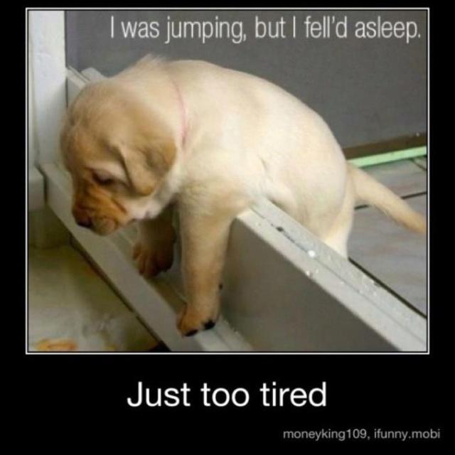 Sooo sleepy