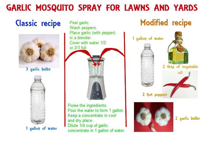 Homemade mosquito yard spray is cheap, effective and easy-to-do