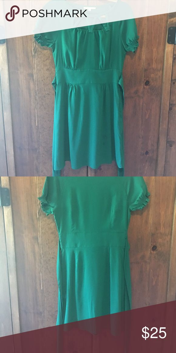 Kelly green Gianni Bini dress Gianni bini above the knee Kelly green dress with non removable dash -side zip-EUC Gianni Bini Dresses