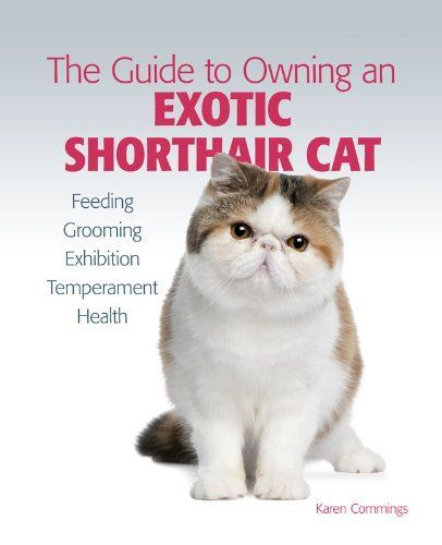 Guide to Owning an Exotic Shorthair Cat by Karen Commings. $4.99