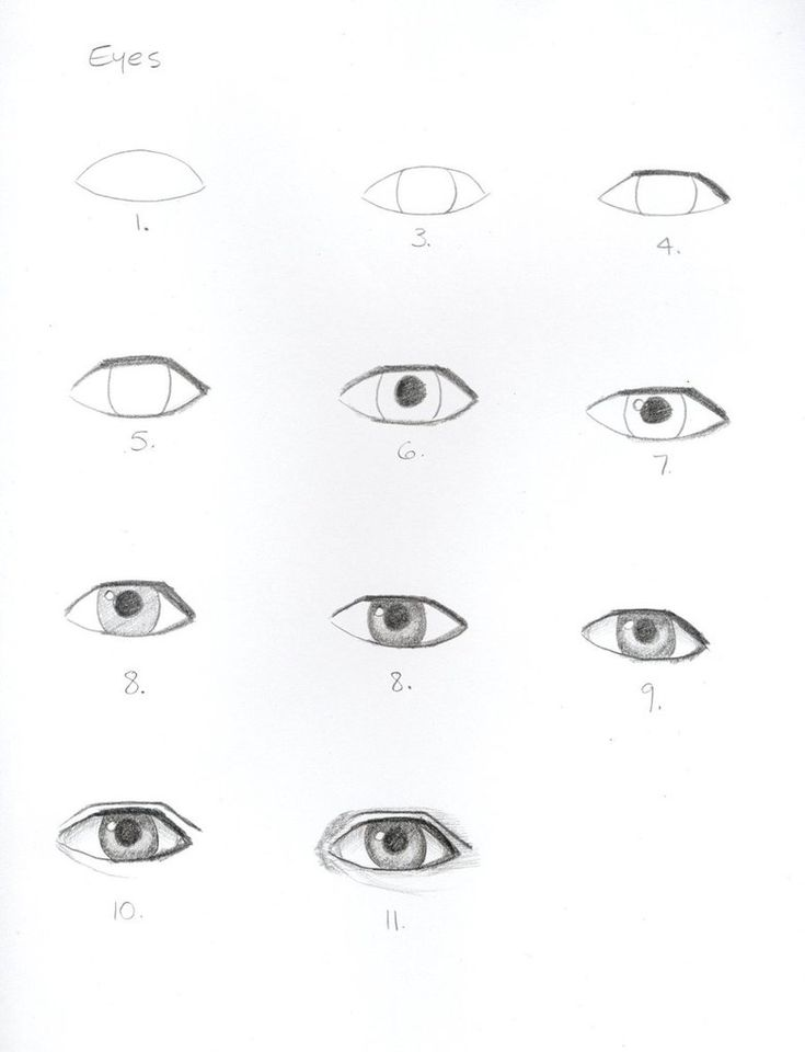 http://www.drawinghowtodraw.com/stepbystepdrawinglessons/ cool drawing site