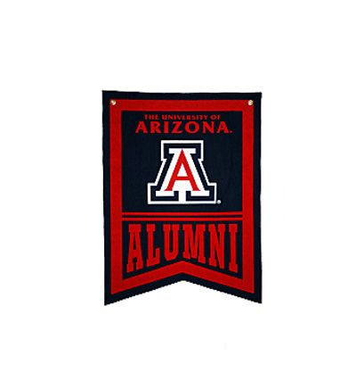 Can I get into the University of Arizona?