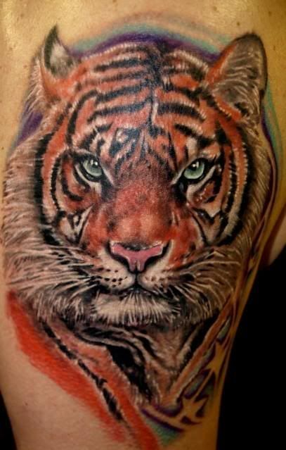 17 best images about tiger tattoos on pinterest tiger tattoo animal tattoos and tiger tattoo. Black Bedroom Furniture Sets. Home Design Ideas