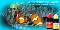 No Sick Fish is a US based manufacturer of Reef Safe Fish Medication, for both Reef and Fresh water tanks. Traditional fish medications available...