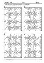 100x4 labyrinter - 20x27