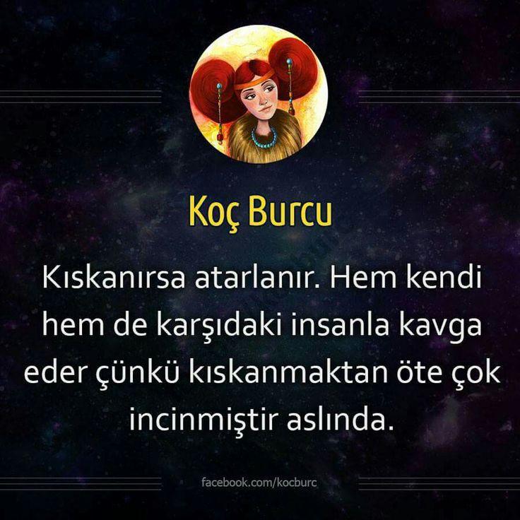 M.Kuzu