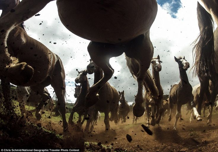 National Geographic 2013 Traveler Photo Contes | Photography Blog