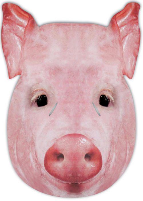 Pig Mask Fancy Face Dress Costume Farm Babe Buy Online