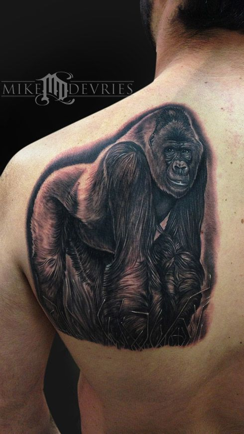 mike devries silverback gorilla tattoos by mike devries pinterest gorilla tattoo tattoo. Black Bedroom Furniture Sets. Home Design Ideas