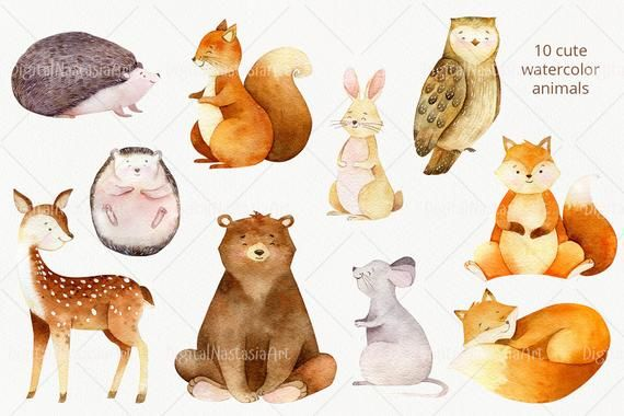 Watercolor Forest Baby Animals Clipart Woodland Nursery Clip Etsy In 2021 Animal Illustration Forest Animals Baby Animals