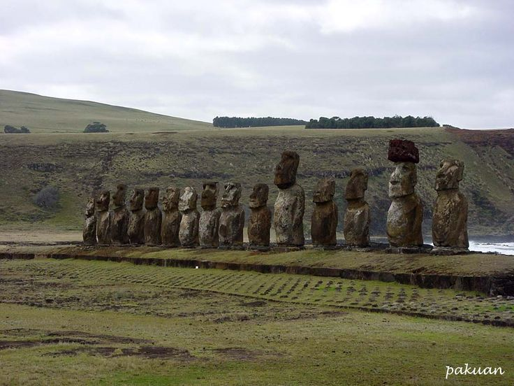 Moai statues of the Easter island, Chile. These ancient statues were meant to scare intruders away.