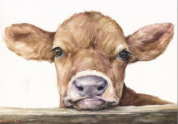 Watercolor Cow Print Calf Print Most Selling Extra Large Wall