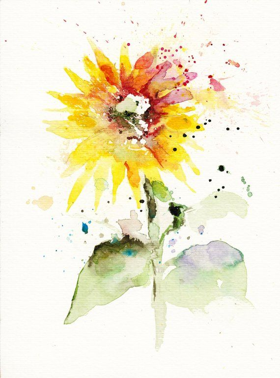 Sunflower Original Watercolor Painting Flowers Art Color Flower