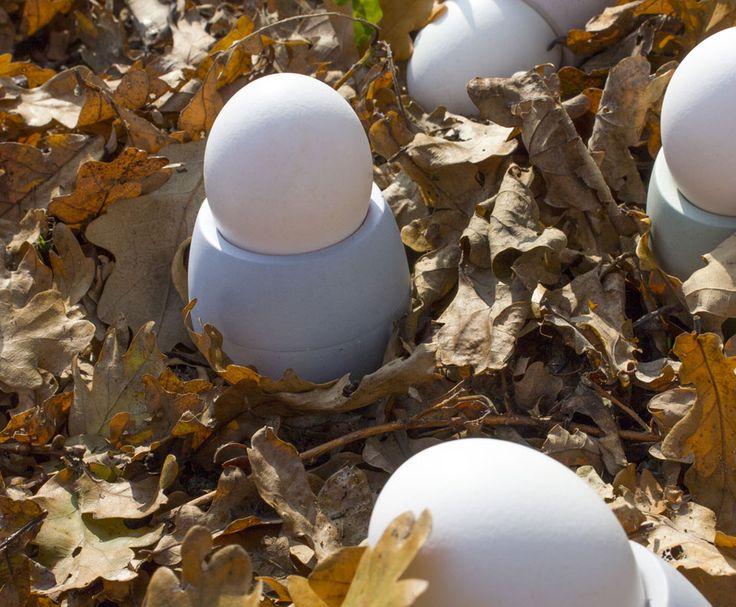 Wir finden die Eiche ist ein bemerkenswerter Baum. Sei es nun die Geschichte, das facettenreiche Nutzholz, oder eben die Frucht, die uns zu diesem Produkt inspiriert hat. Die Form der Eichel begeistert durch Ihre zweigeteilte Form – dem tragenden Kelch und der eigentlichen, rundlichen Frucht. So legt sich auch bei unserem Eierbecher, der harte Kelch, schützend um das Ei. Gegossen aus feinstem Beton zeigt sie, dass Beton nicht unbedingt kalt und grau sein muss.