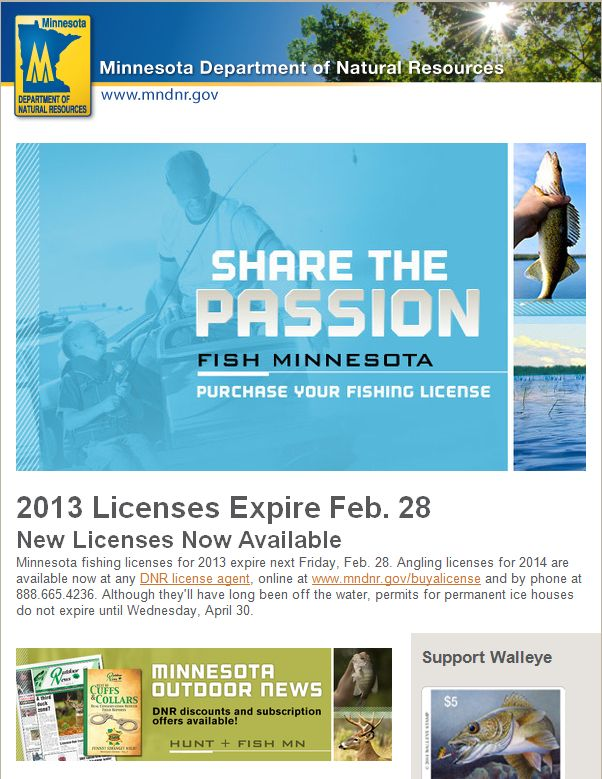 17 best images about email design inspiration on pinterest for Wisconsin dnr fishing license online