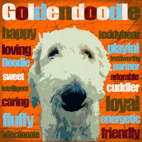 Goldendoodle Art Canvas by DogTaleStudios on Etsy