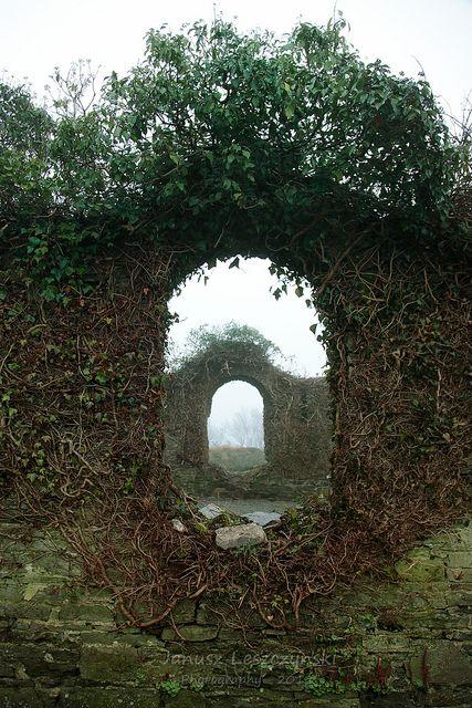 Magical...Irish Window- Kinsale, Ireland