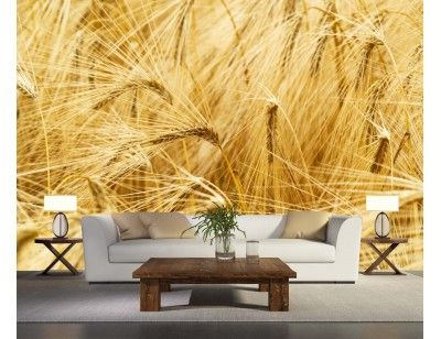 """Mural """"Wheat Field"""". A wall mural from Muralunique.com. https://www.muralunique.com/wheat-field-12-x-9-3-66m-x-2-75m.html"""