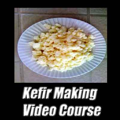 Health conscious folks want to know where to buy kefir grains. Well, you can buy two types of kefir grains: Milk kefir grains and water kefir grains. Both grains are bundled together with the kefir making video course.