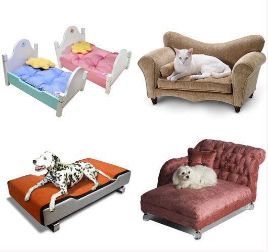1655 best Dog Beds images on Pinterest