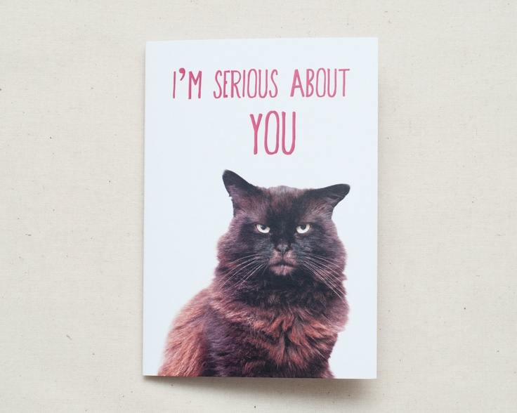 Valentines Card - Oscar the Grumpy Cat.