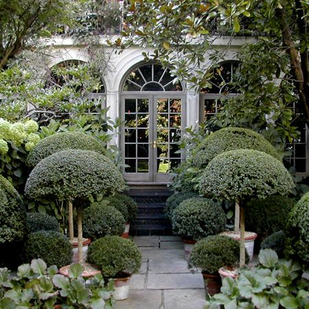 Topiary flanking an orangery.