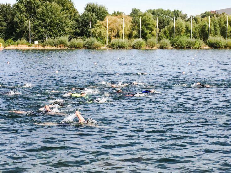Du willst dich für Deinen ersten Triathlon optimal vorbereiten? Das Schwimmen bzw. das Kraulen ist jetzt nicht Deine Königsdisziplin? Natürlich ist der Kraulstil der effizienter. Wenn Du aber nicht ganz fit im Kraulen bist, kannst Du auf der Langdistanz, als Brustschwimmer, Probleme bekommen. Gerade bei den Einsteiger Triathlons schwimmen die Triathleten gerne noch Brust, denn…