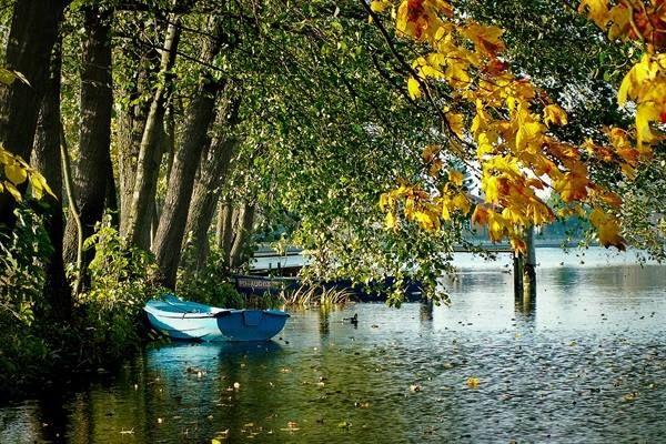 Autumn in Augustów, Netta river - North-Eastern Poland.
