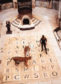 Fort Boyard: great show with cool challenges