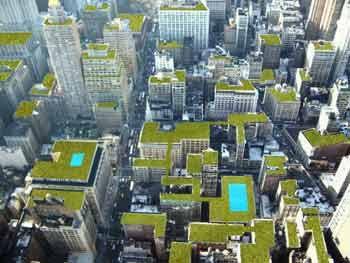 Πράσινες στέγες...η λύση για τις πόλεις :: e-vdela