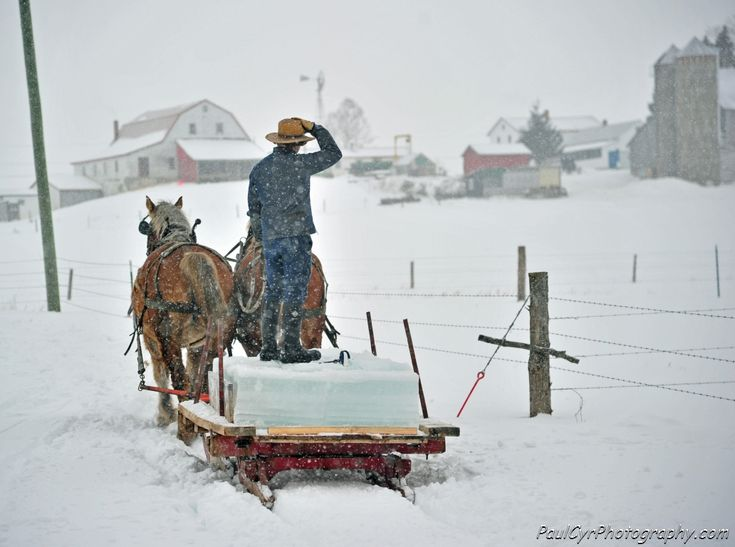 Living the Amish way...... gathering ice for the Ice House