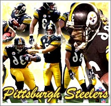 Pittsburgh SteelersSports Team, Favorite Sports, Football Steelers, Steelers National, Pittsburgh Steelers, Football Team, Football Favorite, Time Favorite, Favorite Team