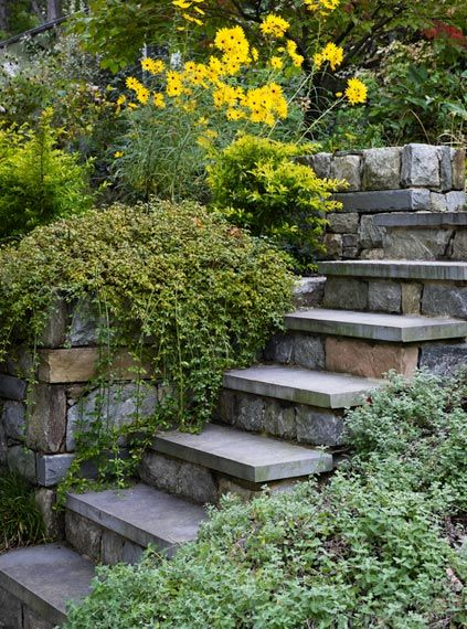 1000+ Images About Hillside Garden On Pinterest