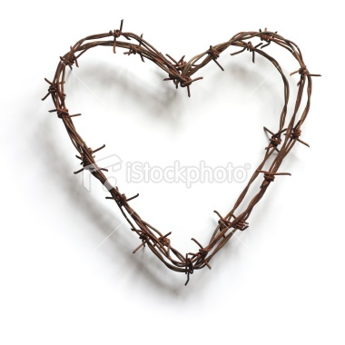49 best BARBED WIRE images on Pinterest | Barbed wire, Barbed wire ...