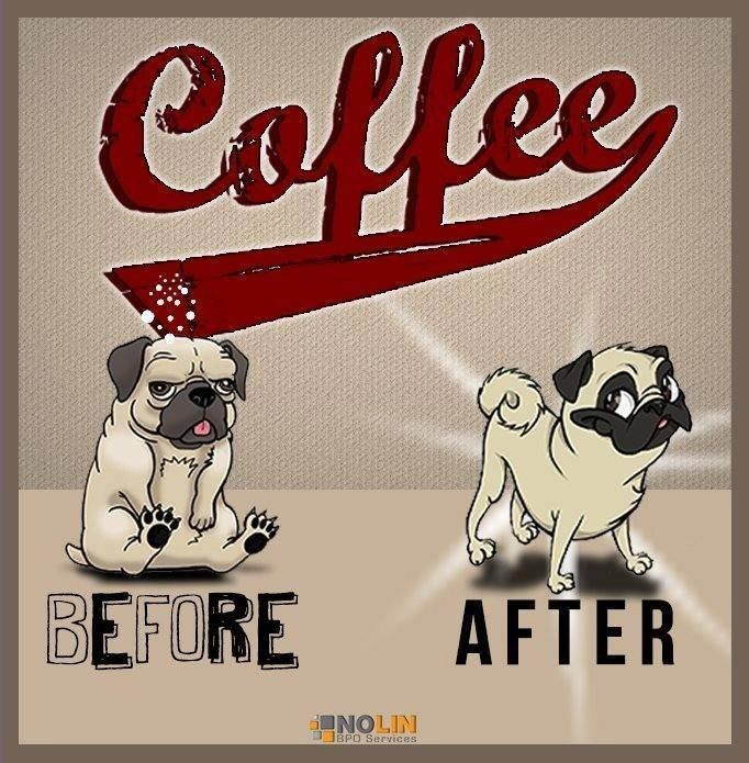 Pugs and Coffee makes us a better version of ourselves.