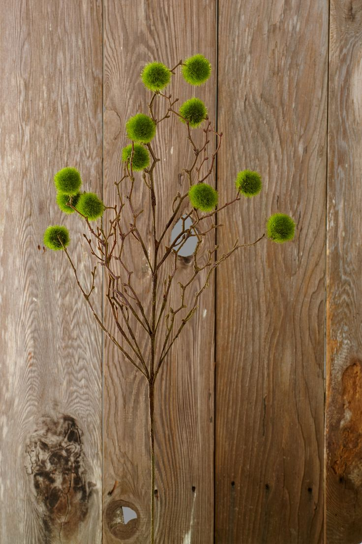 best open house decor images on pinterest wooden signs decor