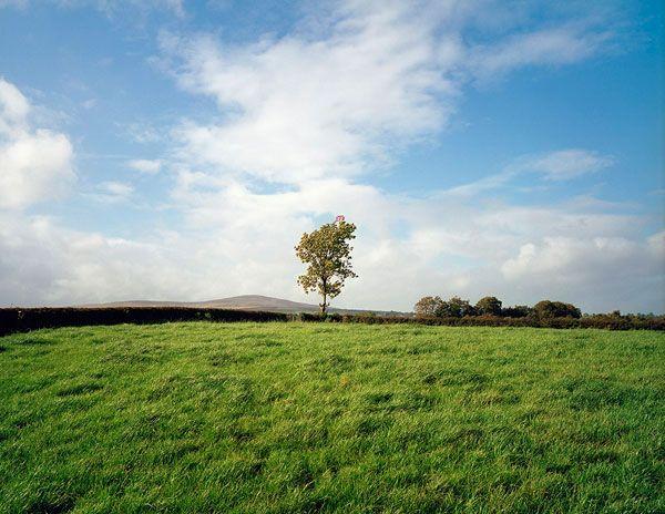 Paul Graham - Troubled Land