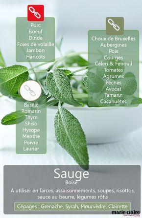 Comment utiliser la sauge en cuisine - Cuisine et Vins de France  ♥️ #epinglercpartager