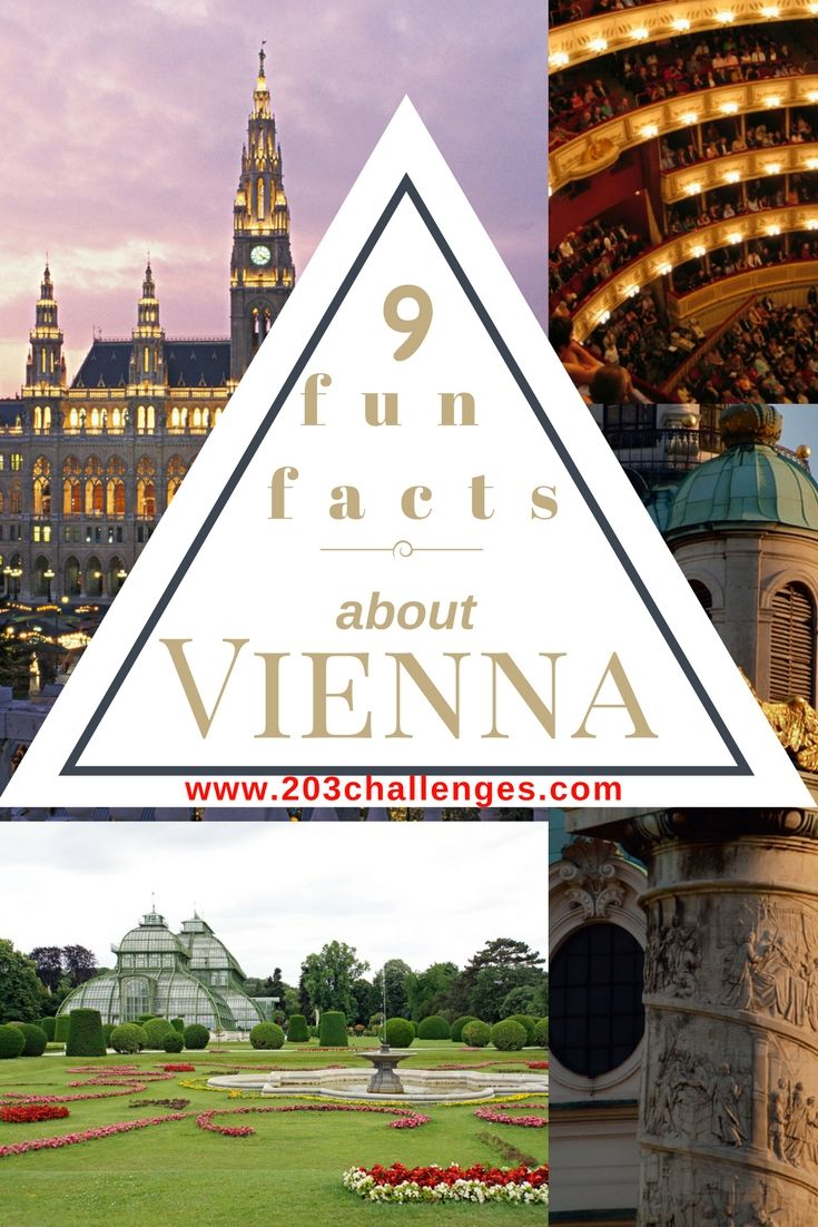 9 fun facts about Vienna to know before you visit it | 203Challenges